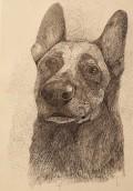 portret-yar